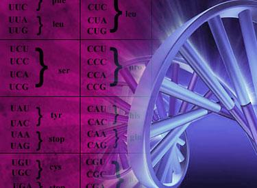 genetic2.jpg