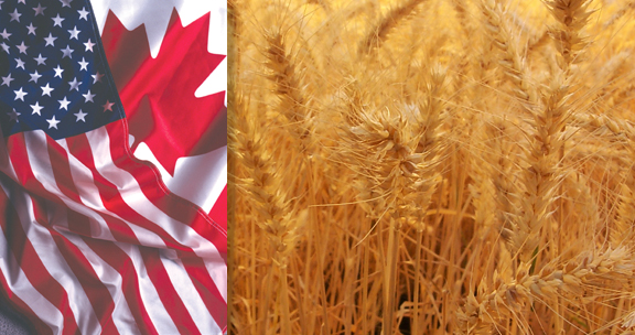 Border Deal Would Put Canadians Under U.S. Food Safety Modernization Act US Canada Border Opens GMOs