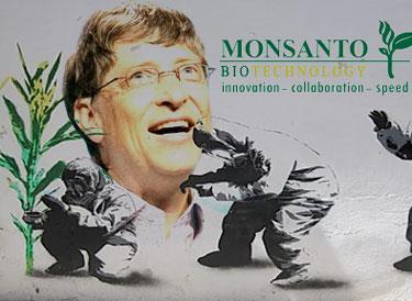 Mais uma do eugenista Gates: Além de financiar matança de bebês, Bill Gates 'investe' US$ 10 milhões para o cultivo de transgênicos