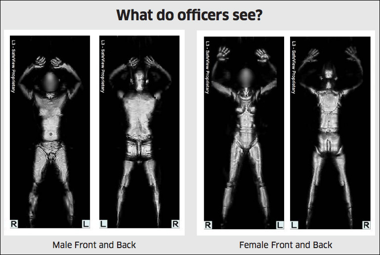 Internal TSA Documents: Body Scanners, Pat Downs Not For Terrorists Screen Shot 2013 10 17 at 10.07.55 AM