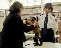 TSA trying to make a monkey out of you.