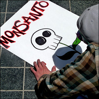 Monsanto is known globally for its aggressive takeover of the world's food supply.  Credit: msdonnalee via Flickr