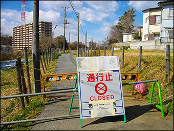 A radioactive hotspot detected in Kashiwa city was found to be linked to Fukushima.