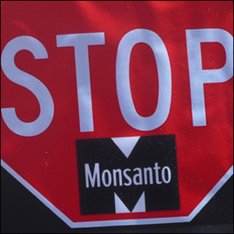 People worldwide have stood up to Monsanto as the company attempts to control the world's food supply. Credit: msdonnalee via Flickr