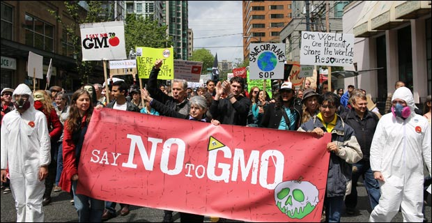 Consumers are never short of reasons to reject GMOs. Credit: Rosalee Yagihara / Wiki