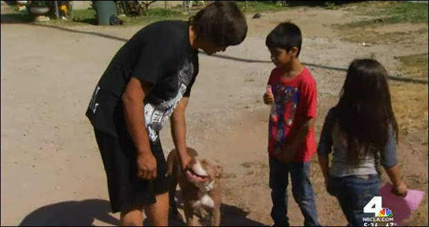 Dog owner Jorge Rodriguez thankful the officer and his dog are OK.