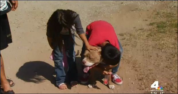 Children relieved dog wasn't shot.
