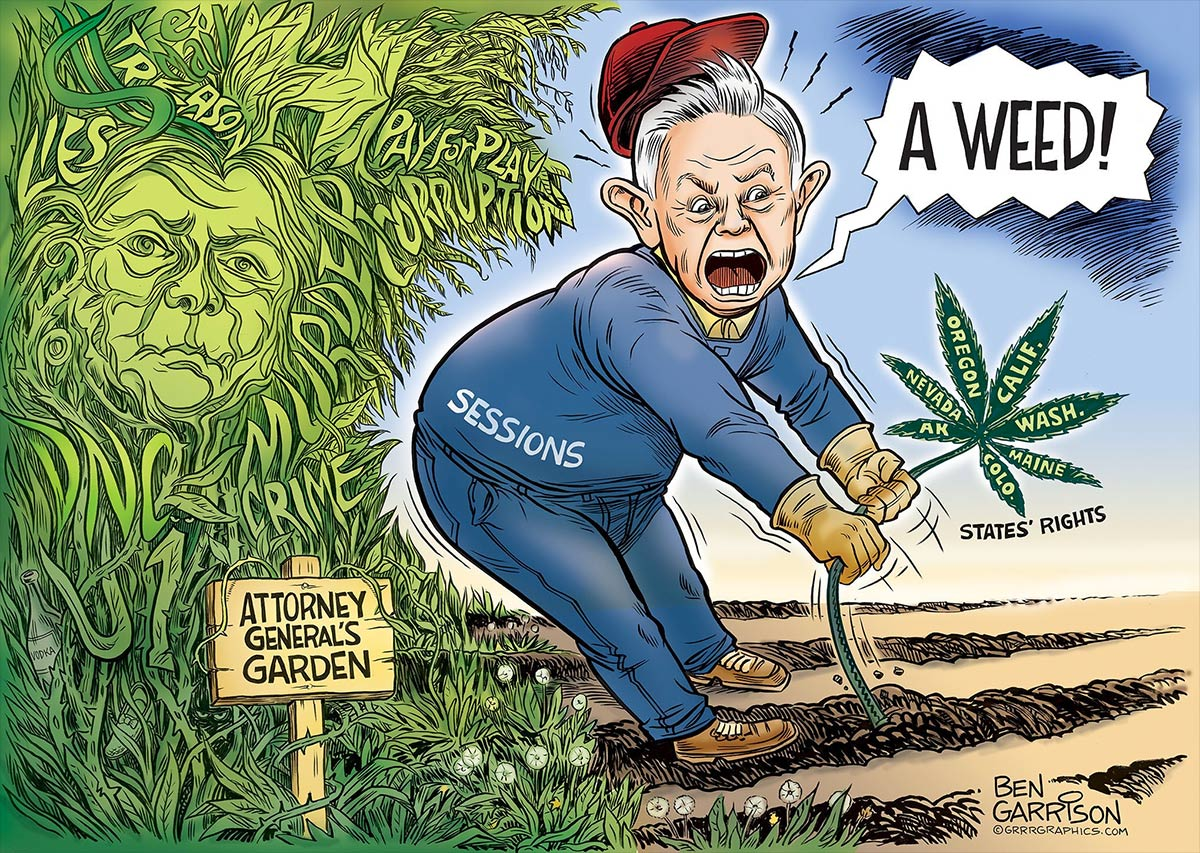 sessions-weed_large.jpg
